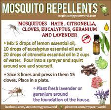 lemon eucalyptus mosquito repellents