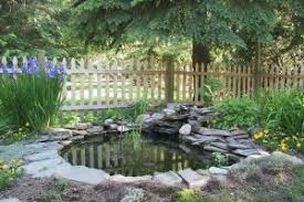 Qualities Of An Elegant Koi Pond Oc Pond And Fountain Care