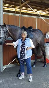 Disability no barrier for Aberdeen's Wendy Dixon's equestrian pursuits |  Muswellbrook Chronicle | Muswellbrook, NSW