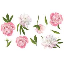 Large Peony Wall Decals Floral Wall Decals Peonies Decor Digiflaregraphics