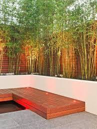 Garden Landscape Lighting Bamboo Trees Wooden Bench Courtyard Design Backyard Modern Garden