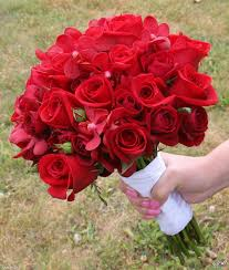 صور ورد احمر اجمل الورود الحمراء Flowers Rose Love Flowers