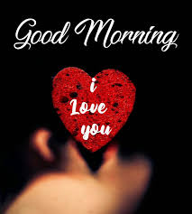good morning i love you image photo