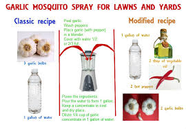 homemade mosquito yard spray is