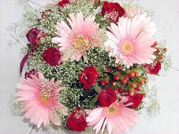 النظرة الأولى خصم كبير تصميم مبتكر صور الزهور الجميله