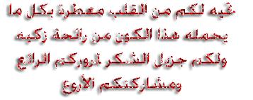 إغلاق حدائق الملك عبدالله الثاني بإربد Images?q=tbn%3AANd9GcSkO5TDcQ3MGB65H9mAhsNNqD8HRtbJ9U2MUg&usqp=CAU