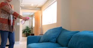 how to deep clean a couch practically