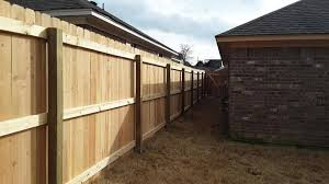 Do Something Exciting This Year And Get Big Dog Fence Company