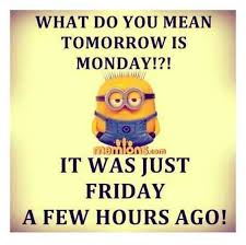 funny quotes of the day precious your time daily funny quote