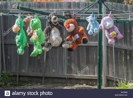 Stuffed Toys Hanging Out Drying On The Washing Line In A Suburban Stock Photo Alamy