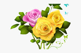 yellow rose clipart pink rose and