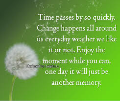quotes about time passing fast quotes