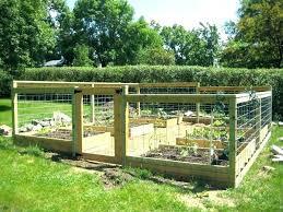 raised garden bed layout deer proof en