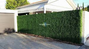 Boxwood Hedge Screen Green Wall Panel Uv Resistant 100cm X 100cm