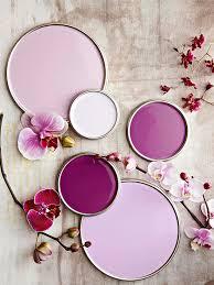 purple paint colors better homes