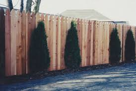 Fence City 6 Ft High Western Red Cedar 1 X 6 French Gothic Solid Board