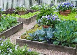 four x four foot vegetable garden