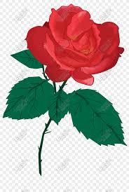Lovepik صورة Psd 611302366 Id الرسومات بحث صور وردة حمراء زهرة