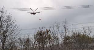Gebze'de çıkan orman yangını kontrol altına alındı | Haberler > ASAYİŞ