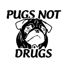 Pugs Not Drugs T Vinyl Decal Sticker