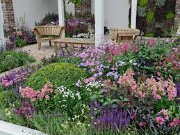 cottage garden design plants