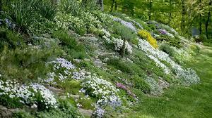 sloped backyard garden design ideas