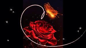 صور ورود حمراء متحركه الورود الحمراء فى صورة متحركه تشبه الحقيقه
