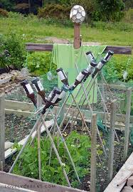 keep birds out of the vegetable garden