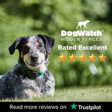 Dogwatch Hidden Fences And Training Products Home Facebook