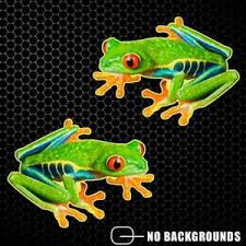 Tree Frog Sticker Decal Red Eyed Tropical Window Truck Car Yeti Cup Herpetology Ebay