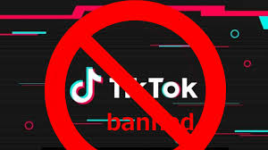 Netizens, TikTokers welcome govt's decision on banning Chinese ...