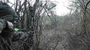 hoyt bow hunting wallpaper 64 images