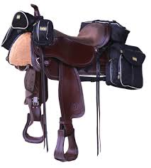western tack gear guide horse rider