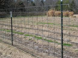 10 Best Hog Wire Fence Design And Ideas For Your Backyard Cattle Panels Cattle Panel Fence Hog Wire Fence