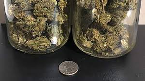 how much is 3 5 grams of weed plain