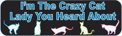 10in X 3in I M The Crazy Cat Lady Bumper Sticker Car Window Stickers Decal Decals Stickertalk