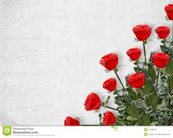 Tarjeta Para La Invitacion Con Las Rosas Rojas Imagen De Archivo