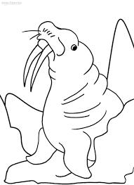 Rasane Sepoh Kleurplaat Walrus