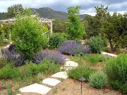 landscaping xeriscaping the