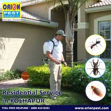 RESIDENTIAL PEST CONTROL SERVICES IN KOLHAPUR
