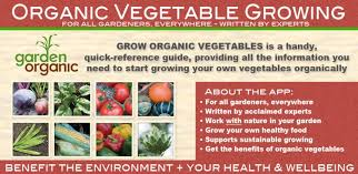 how to grow your own organic vegetables