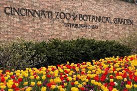 cincinnati zoo adventure ticket