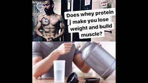 does whey protein help to lose weight