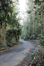 Image result for unknown roads