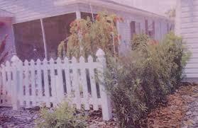 Brouhaha In Bayport Villas In Buttownwood Began Over Concerns About Bottlebrush Tree Villages News Com
