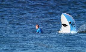 Mick Fanning shark attack ...