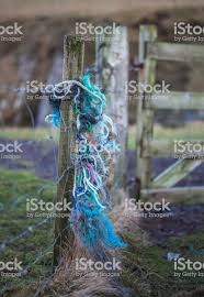 Colourful Fishing Rope Wrapped Round Fence Post Stock Photo Download Image Now Istock