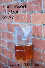 diy homemade fly trap the art of