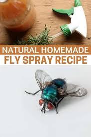 natural homemade fly spray recipe
