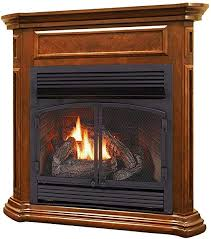 dual fuel ventless gas fireplace